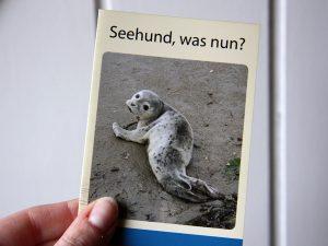 Seehund, was nun? Broschüre in der Hand